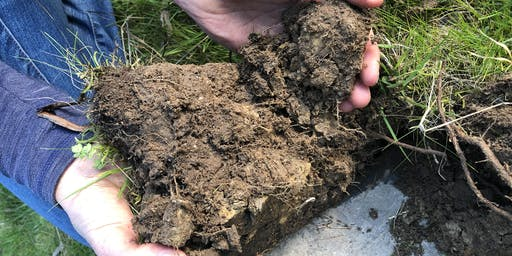 Introduction to Soil Biology & launch of the Enhancing Soil Biology project