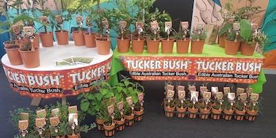The Tucker Bush Project....hear it from the horses mouth, Mark Tucek