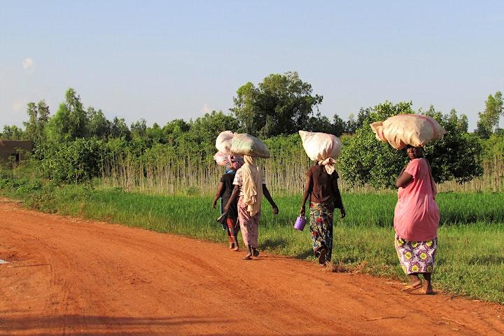 Image pour Des droits pour les paysans et les ruraux : place à l'action !