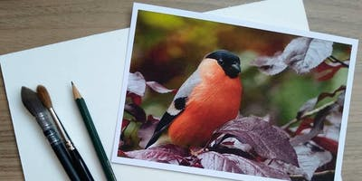 All-day Wildlife Watercolour Art Workshop for all abilities - Bullfinch