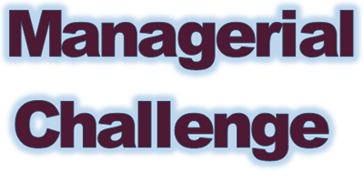 Managerial Challenge Essay Workshop - Wed 16 October, am