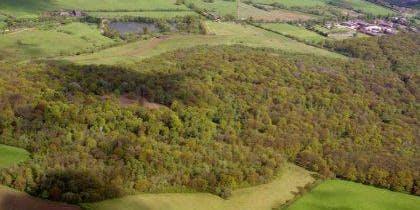 Dunsmore Living Landscape: Historic Woodlands and Landscapes