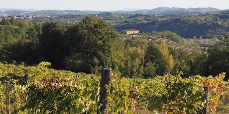 Tuscan Wine Tasting with Matteo Cantini, Fattoria Fibbiano - Altrincham tickets