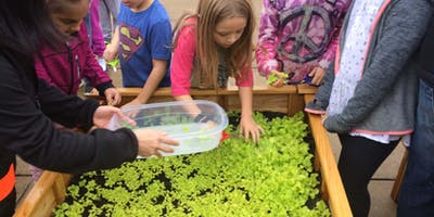 Garden to Cafeteria Volunteer Training