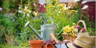 Jardinagem Orgânica 21/09/2019- Cancelado