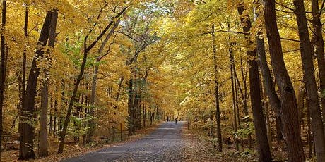 The Photographers Group Fall Outing: UW-Madison Arboretum tickets