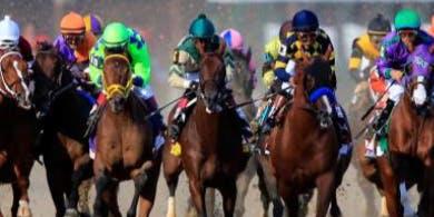 Nite at the Races-  Dayton Ohio