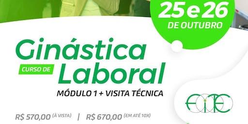 Curso de Ginástica Laboral - Modulo I + Visita Técnica