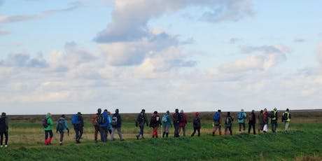 Norfolk Walking Festival: North Norfolk Night Safari tickets