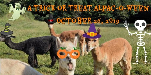 A Trick or Treat Alpac-O-Ween 12:00 PM to 5:00 PM