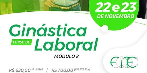 CURSO DE GINÁSTICA LABORAL - Módulo II