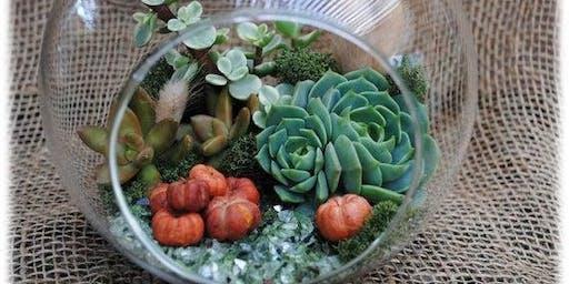 Create your own Fall Themed Succulent Terrarium