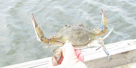 Crabbing Basics: making it Delicious, keeping it Sustainable tickets