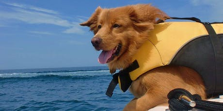 Paddle with your Pooch! Kayaking  tickets