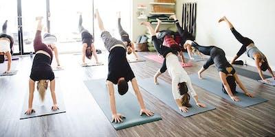 Back to Basics Yoga Flow