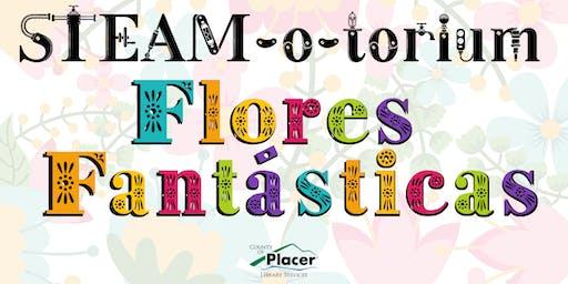 STEAM-o-torium: Flores Fantásticas at the Rocklin Library