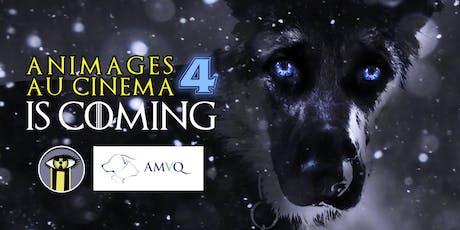 Animages au cinéma 4 billets