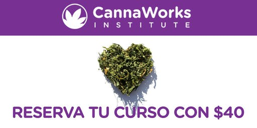 RESERVA PONCE | Cannabis Training Camp | 19 & 20 de Octubre | CannaWorks Institute