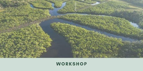 Workshop: Threats to the Brazilian Environment and Environmental Policy tickets