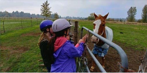 Horsin' Around with Girl Scouts Fall 2019