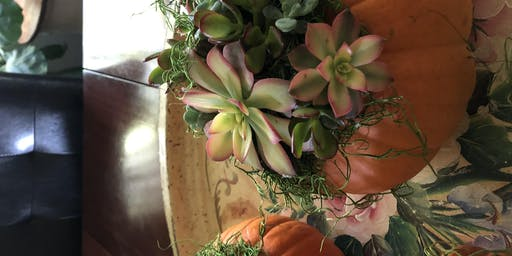 Wine Wednesday Pumpkins and Succulents - Second Class
