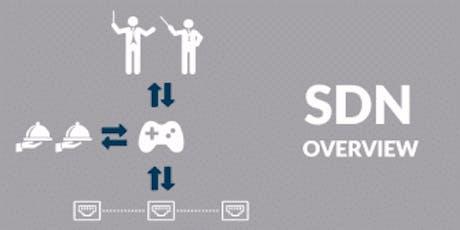 SDN Overview 1 Day Virtual Live Training in Milan biglietti