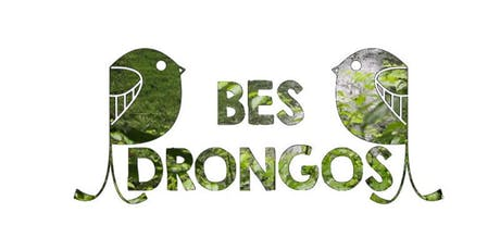 The Tale of Our Forests - 19 Oct 2019 BES Drongos Petai Trail Walk (AM) tickets