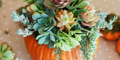 Gourd or Pumpkin Planter Workshop tickets