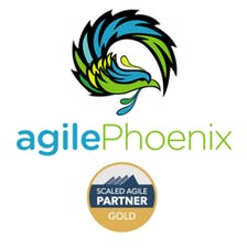 Agile Phoenix Enterprises logo