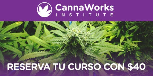 RESERVA | Cannabis Training Camp | 19 & 20 de Octubre | CannaWorks Institute
