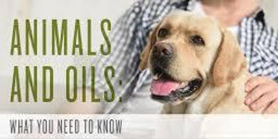 Essential Oils are for Fur Babies too... Animals 101