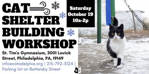 Cat Shelter Building Workshop