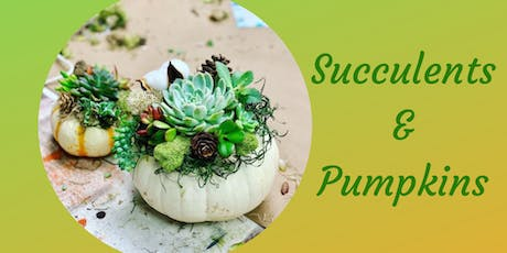 Succulents & Pumpkins tickets