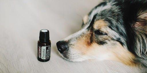 Pets & óleos essenciais