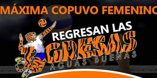 Las Tigresas de Aguas Buenas, Maxima Copuvo 2019