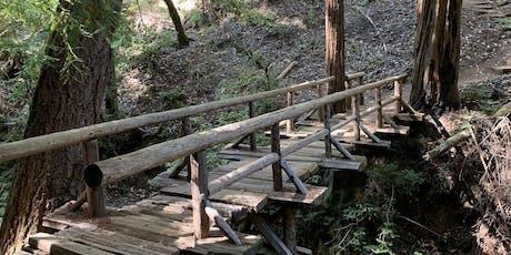 Cataract Falls Hike 6.5 Miles [Mt. Tam] tickets