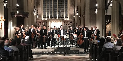 London Doctors' Orchestra and Choir Autumn Charity Concert