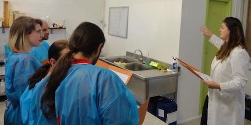 Corso di saponificazione
