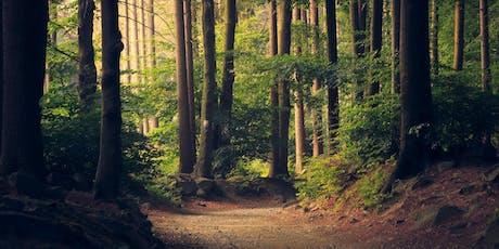 Finding Stillness Through Meditation - A Gateway To Freedom tickets