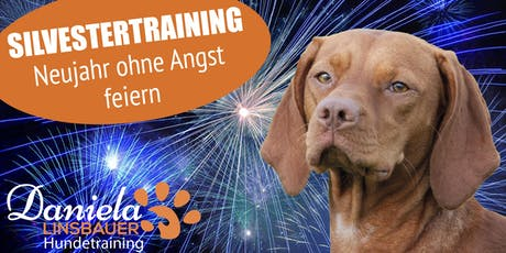Silvesterangst! Hilfe für ängstliche Hunde Tickets