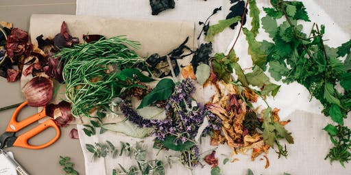 Natural Fabric Dyeing Workshop #3