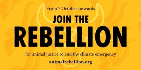Croydon: Climate Urgency, Animal Emergency & What To Do About It  tickets