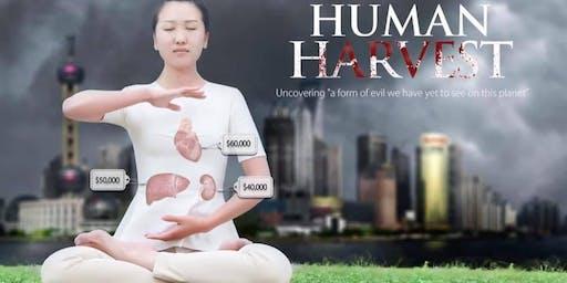 Human Harvest Documentary