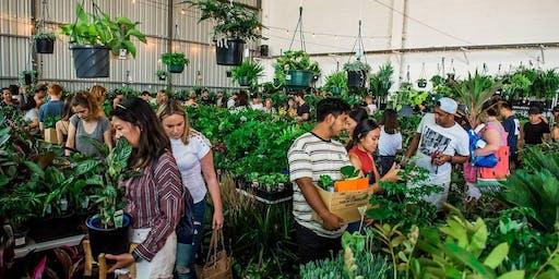 Canberra - Huge Indoor Plant Warehouse Sale - Springtime Splendour