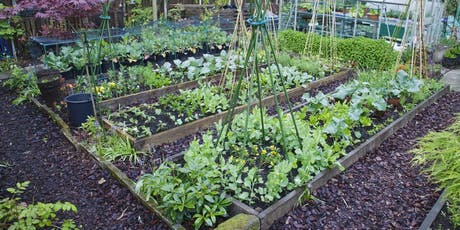 Green @ Kathleen: Preparing your Winter Veggie Patch! tickets