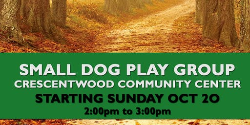 Crescentwood Small Dog Playgroup October 20