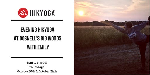 October Evening Hikyoga at Gosnell's Big Woods with Emily