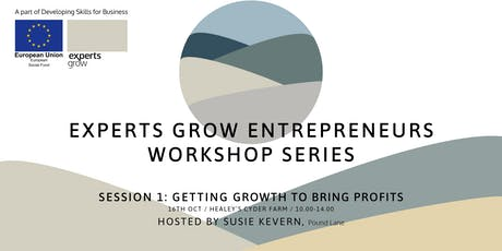 Getting growth to bring profits - Hosted by Susie Kevern of Pound Lane tickets