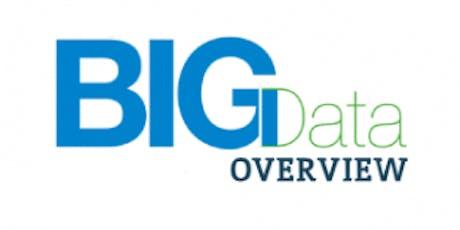 Big Data Overview 1 Day Virtual Live Training in Rome biglietti