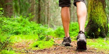 Meditazione camminata Zen nel bosco biglietti